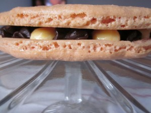 Gâteau macaron chocolat/clémentine dans desserts img_3961-300x225